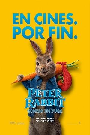 peter-rabbit-conejo-en-fuga-86169-1630854487784